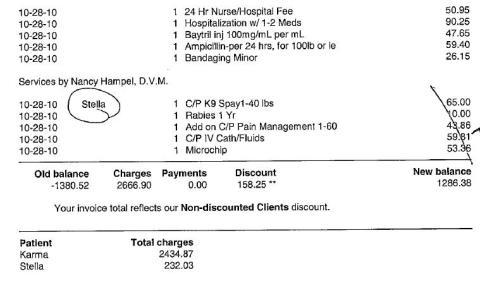 Karmas Expenses pg 2