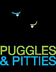 Puggles & Pitties